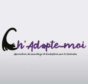 Logo professionnels créés par Updoze - Conception logos gratuits