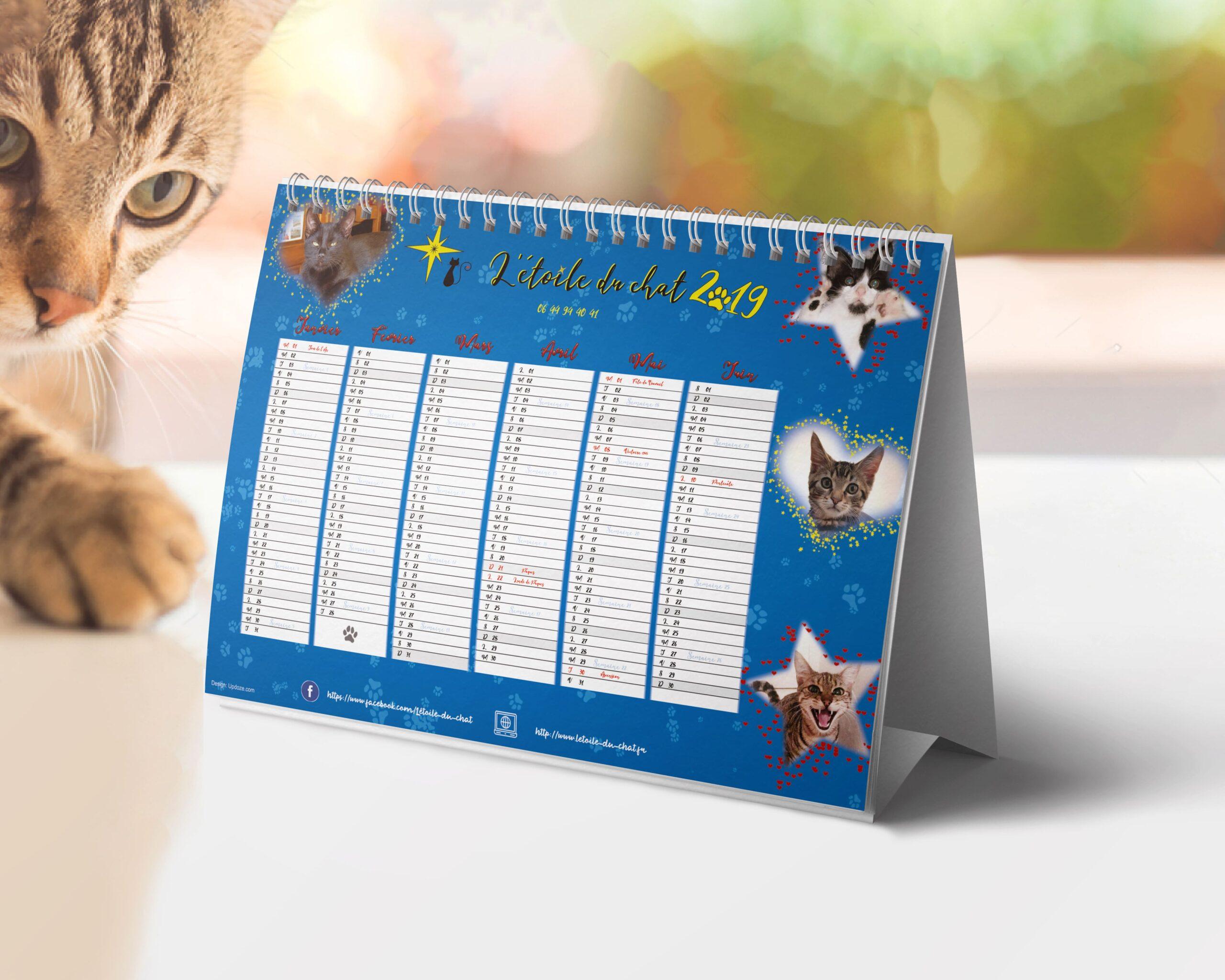cas client l'étoile du chat calendrier 2019